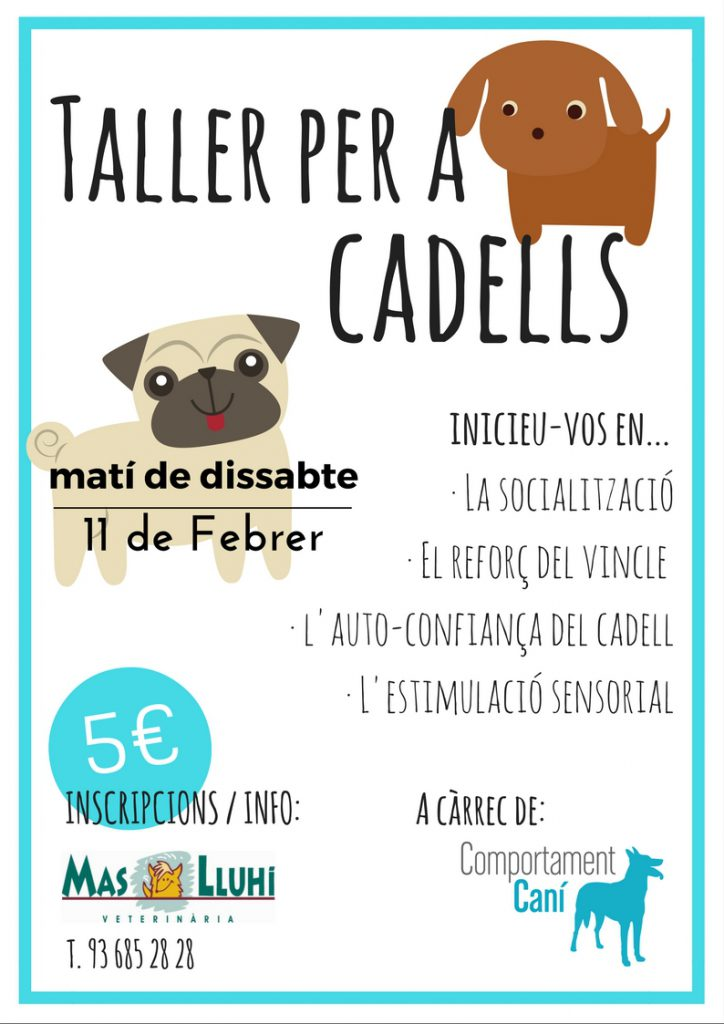 Taller per a cadells
